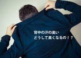 senaka_ase_nioi 01