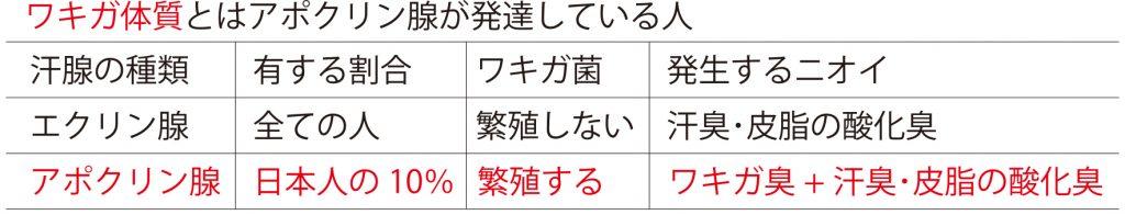 ワキガ体質の特徴表